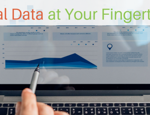 Stressed Out by Data Tracking & Analytics? We Do it for You!